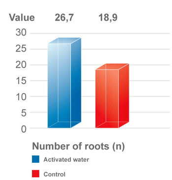 OET in plants - study with activated water